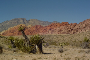 Red Rock Canyon 2 300.jpg